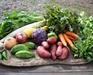 Veggie-box